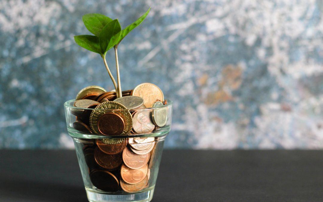 bicchiere con monete e una pianta